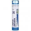 Boiron Ledum palustre CH30 4 g