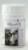 Vitálvár Micovit kemoterápia hatását kiegészítő gyógygomba kapszula 180 db